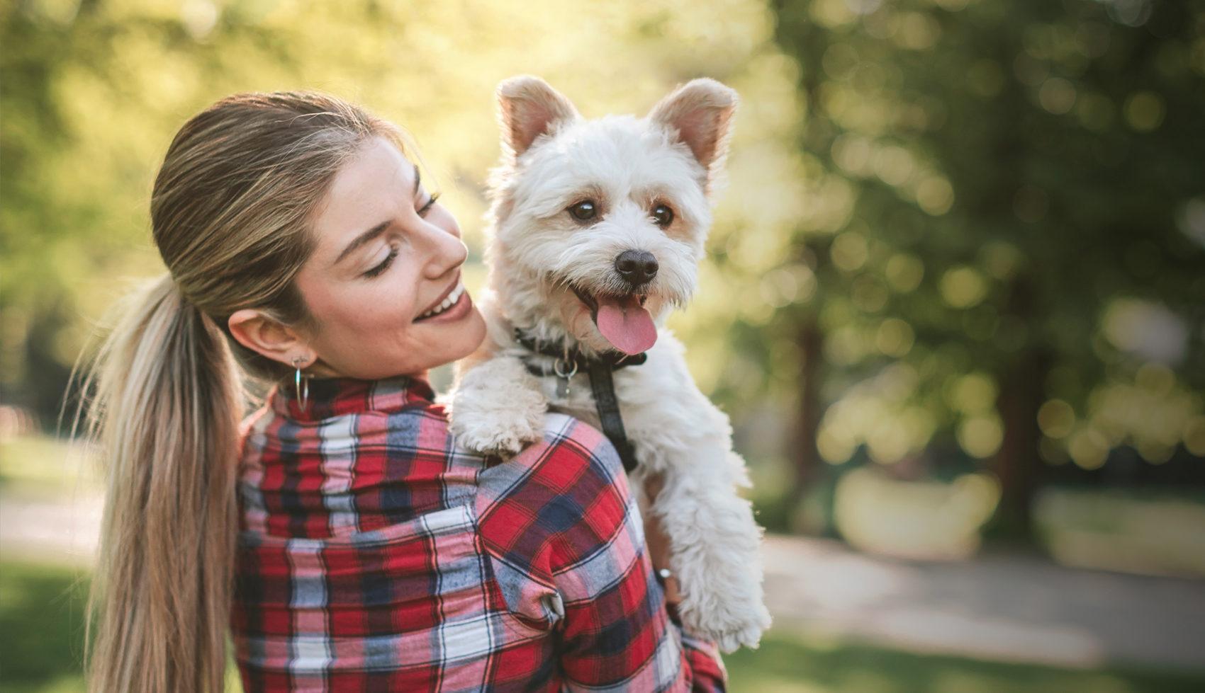 Euro-Premium - De nieuwe website van Euro-Premium zorgt voor blije honden én baasjes
