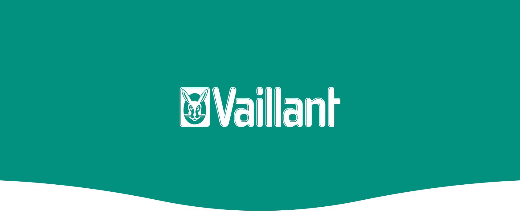 Vaillant Case Header Logo Curve
